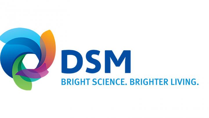 DSM – DSM